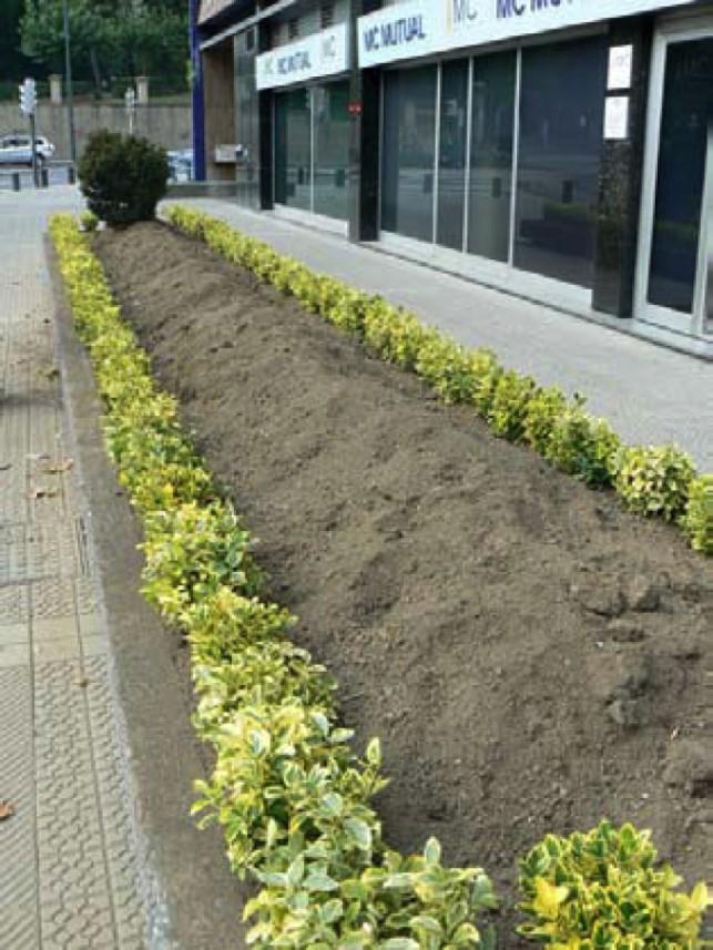 Parterre sin riego ni perfilado realizado en Bilbao